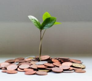 A new seedling sprouting from a stack of coins